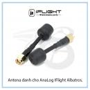 Antena dành cho AnaLog IFlight Albatross SMA 5.8G RHCP